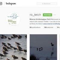 la réserve ornithologique du teich est sur instagram