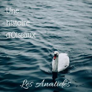 une histoire d'oiseaux: les anatidés