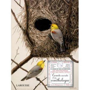 Carnets secrets d'un ornithologue, un cadeau à offrir à Noël!