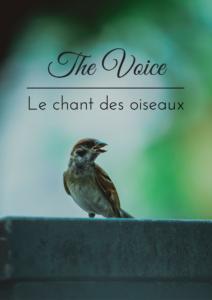 Téléchargez gratuitement l'ebook d'une histoire de plumes sur le chant des oiseaux