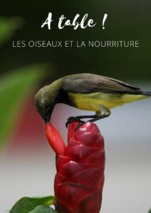 Téléchargez gratuitement l'ebook d'une histoire de plumes sur les oiseaux et la nourriture