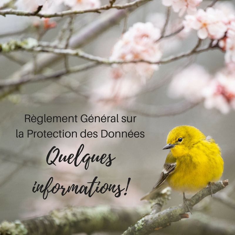 Informations sur le RGPD - Une histoire de plumes - Politique de confidentialité