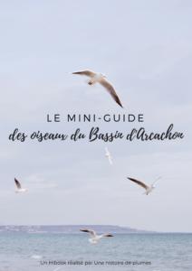 Le mini-guide des oiseaux du bassin d'Arcachon, un hibook d'une histoire de plumes