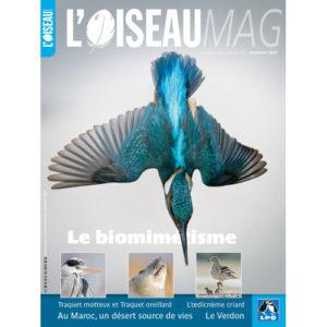 Un abonnement à une revue spécialisée, l'une des idées cadeaux d'une histoire de plumes à offrir à un passionné d'oiseaux