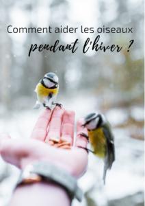 Une histoire de plumes vous donne des trucs et des astuces pour aider les oiseaux l'hiver