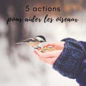 Le Bird-Blog d'une histoire de plumes vous indique 5 actions pour aider les oiseaux