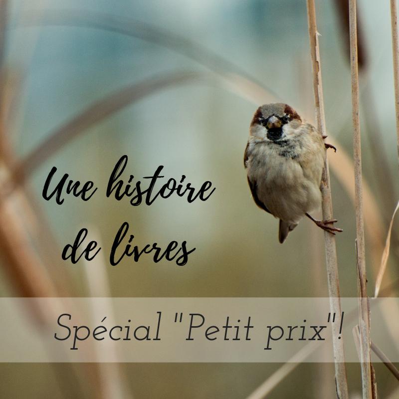 Nouvel article du Bird-Blog d'une histoire de plumes: une sélection de livres d'ornithologie à petit prix