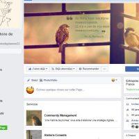 Découvrez Une histoire de plumes sur Facebook!