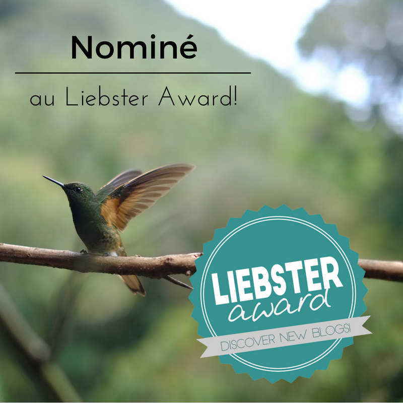 Nominé au Liebster Award !