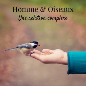 Homme et oiseaux: une relation complexe