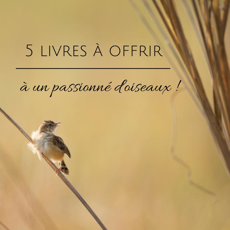 Idées-cadeaux pour Noël: 5 livres à offrir à un passionné d'oiseau