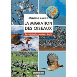 La migration des oiseaux, Maxime Zucca, Editions Sud Ouest
