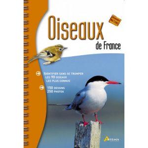 Oiseaux de France, Artémis, 5 livres à offrir aux passionnés d'oiseaux