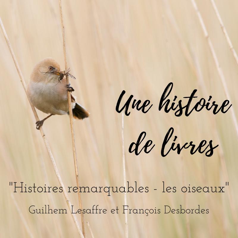 Découvrez le premier numéro d'Une histoire de livres, série qui vous présente des livres d'ornithologie! Cette semaine, Histoires remarquables - les oiseaux