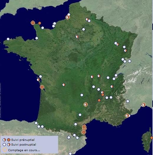 Les sites de suivi migratoire en France, un article du bird-blog d'une histoire de plumes