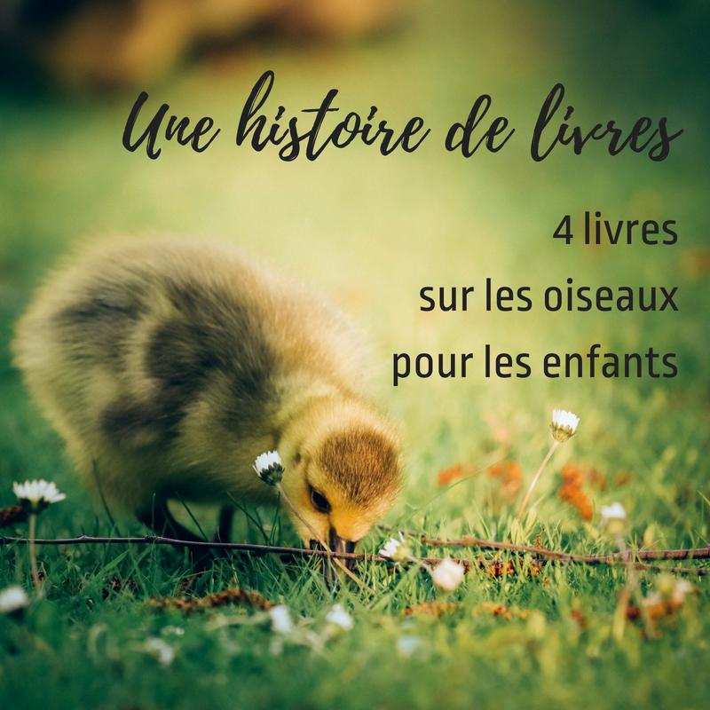 Une histoire de livres - 4 livres sur les oiseaux pour les enfants, un article du Bird-blog d'une histoire de plumes