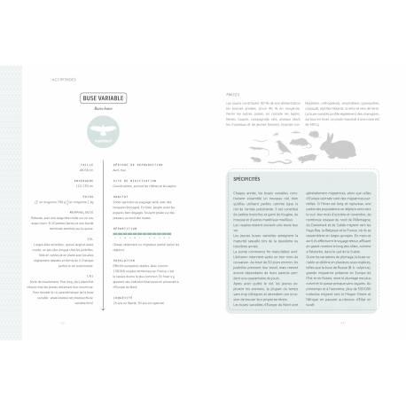 """Exemple n°3 d'illustration du livre Rapaces diurnes et nocturnes d'europe de chez artémis, un article """"une histoire de livres"""" d'une histoire de plumes"""