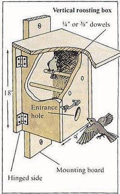 La boite-dortoir, une idée pratique pour aider les oiseaux du nouvel article du bird-blog d'une histoire de plumes