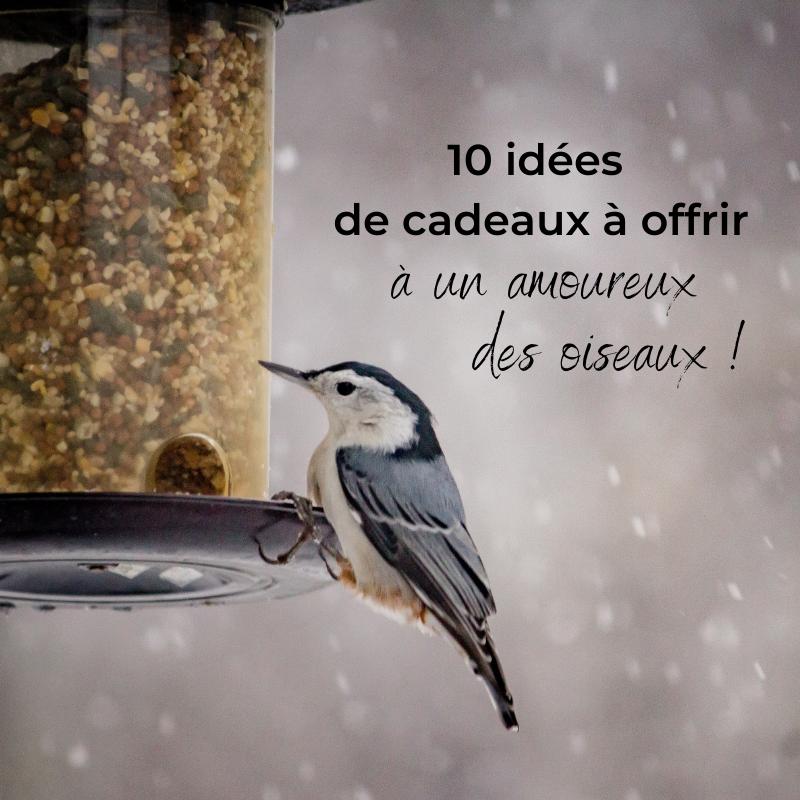 10 idées de cadeaux à offrir à un amoureux des oiseaux, le nouvel article du bird-blog d'une histoire de plumes
