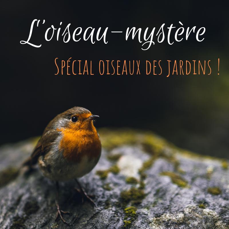 Devinez quel oiseau se cache derrière chaque oiseau-mystère, nouvel article du bird-blog d'une histoire de plumes
