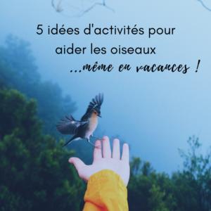 5 idées d'activités pour aider les oiseaux en vacances, le nouvel article du bird-blog d'une histoire de plumes